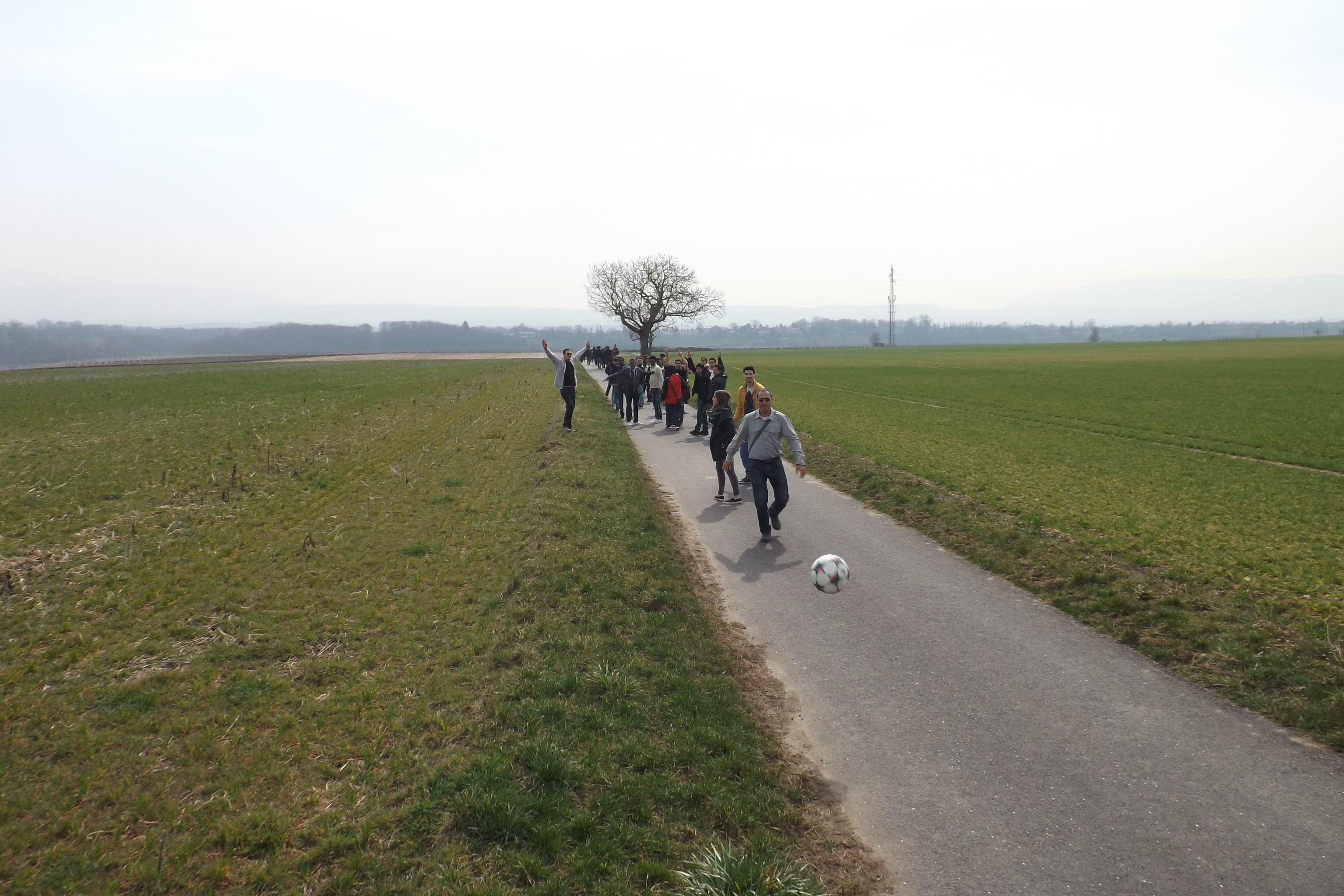 Promenade à Dardagny, 2015